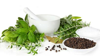 Herbs for Bronchitis Relief